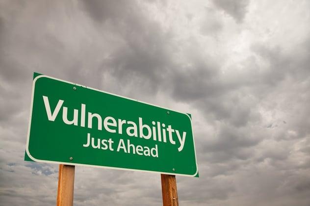 alpine-security-vulnerability-assessment-st-louis.jpg